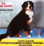 cacib_kiev_preview.jpg
